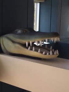 Gator Head