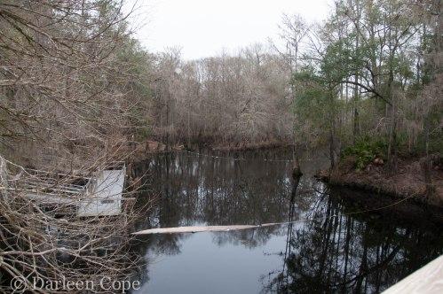 O'Leno State Park February 2015-2