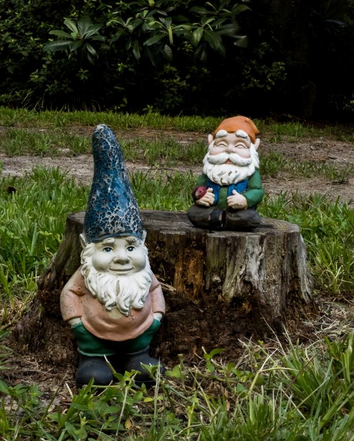 Gnomes Focus Stack